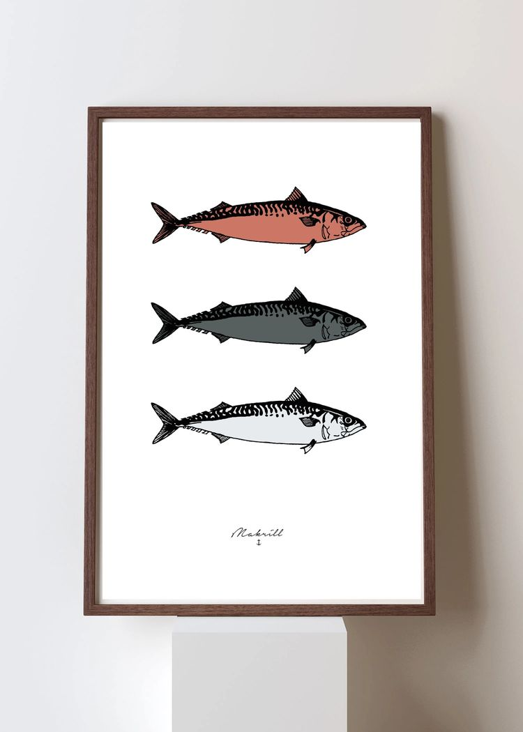 """Product image for """"Poster Makrill Multi"""""""