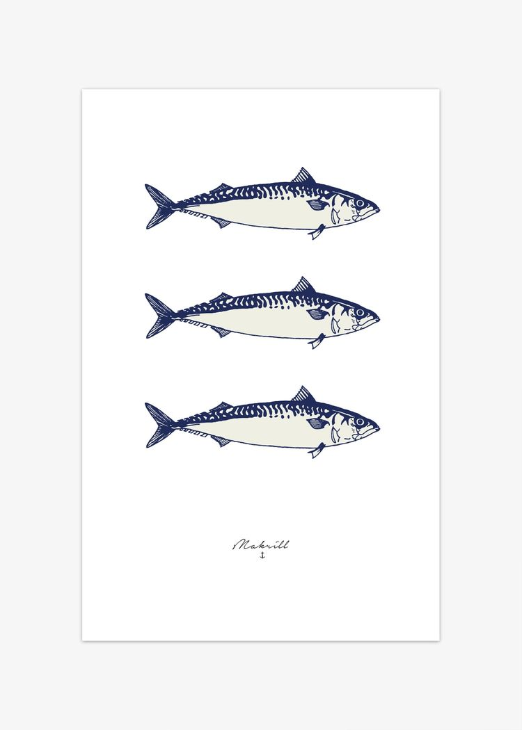 """Product image for """"Poster Makrill"""""""