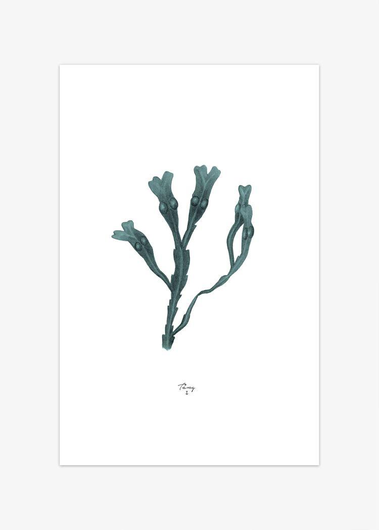 """Product image for """"Poster Tång Grön"""""""