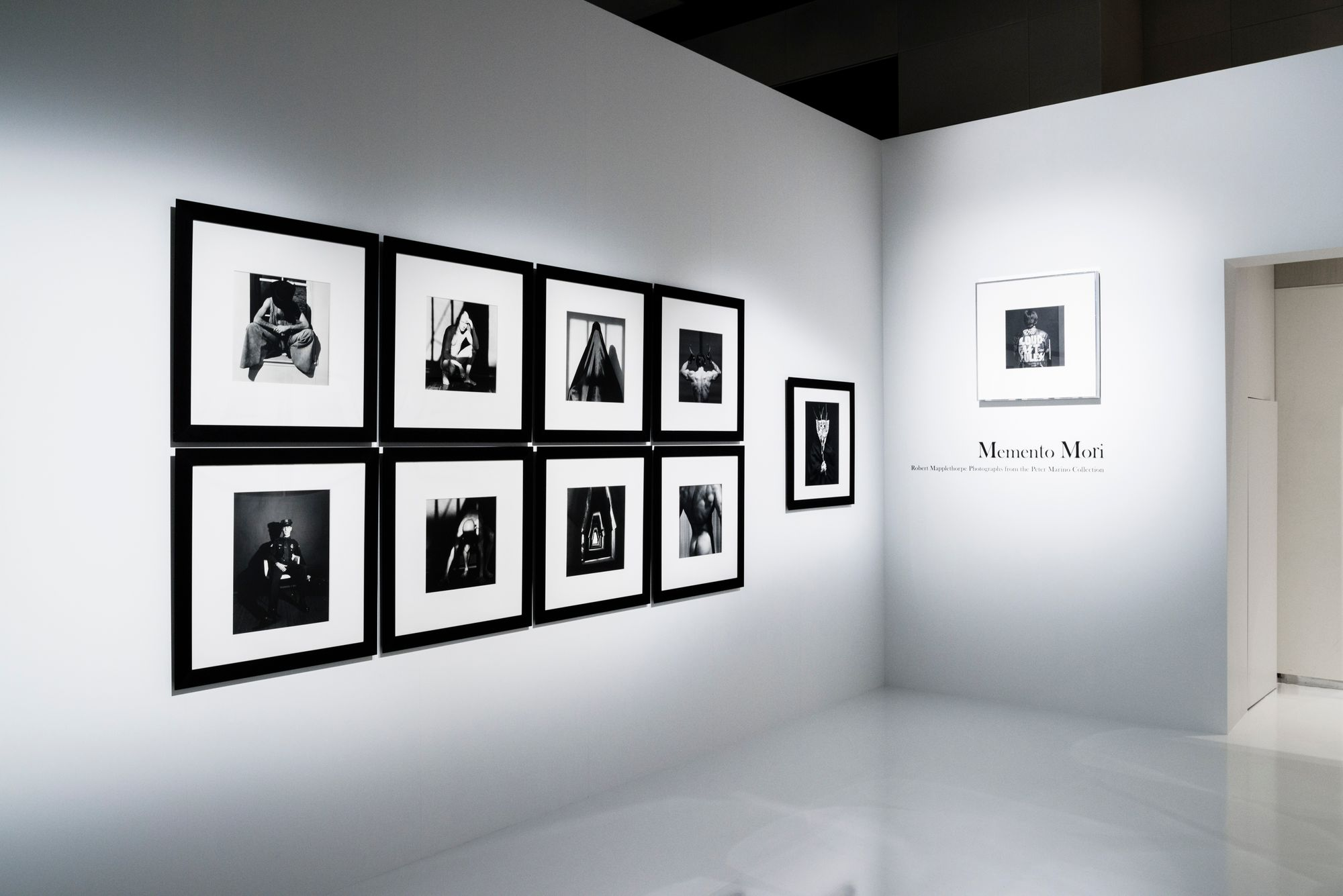Project Image for Memento Mori: Mapplethorpe Photographs