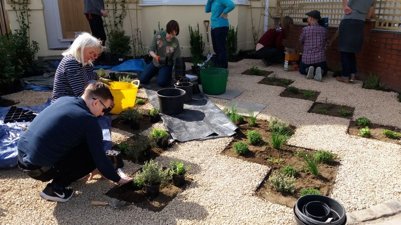 Planting in action!