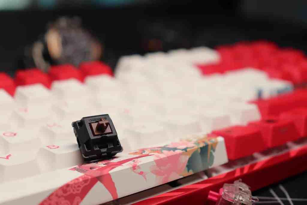Switch Cherry Mx Brown sur un clavier custom