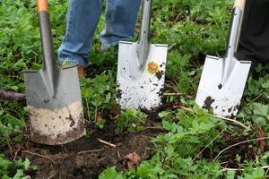 work-lawn-flower-tool-green-backyard