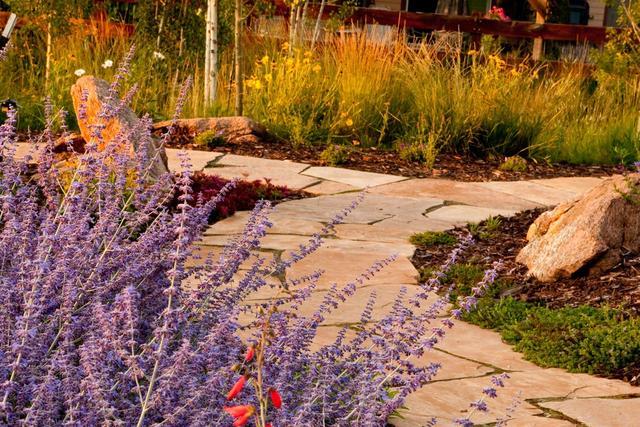 Longmont-Colorado-Landscape-Flagstone-Walkway