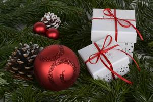 tree-branch-white-gift-decoration-red