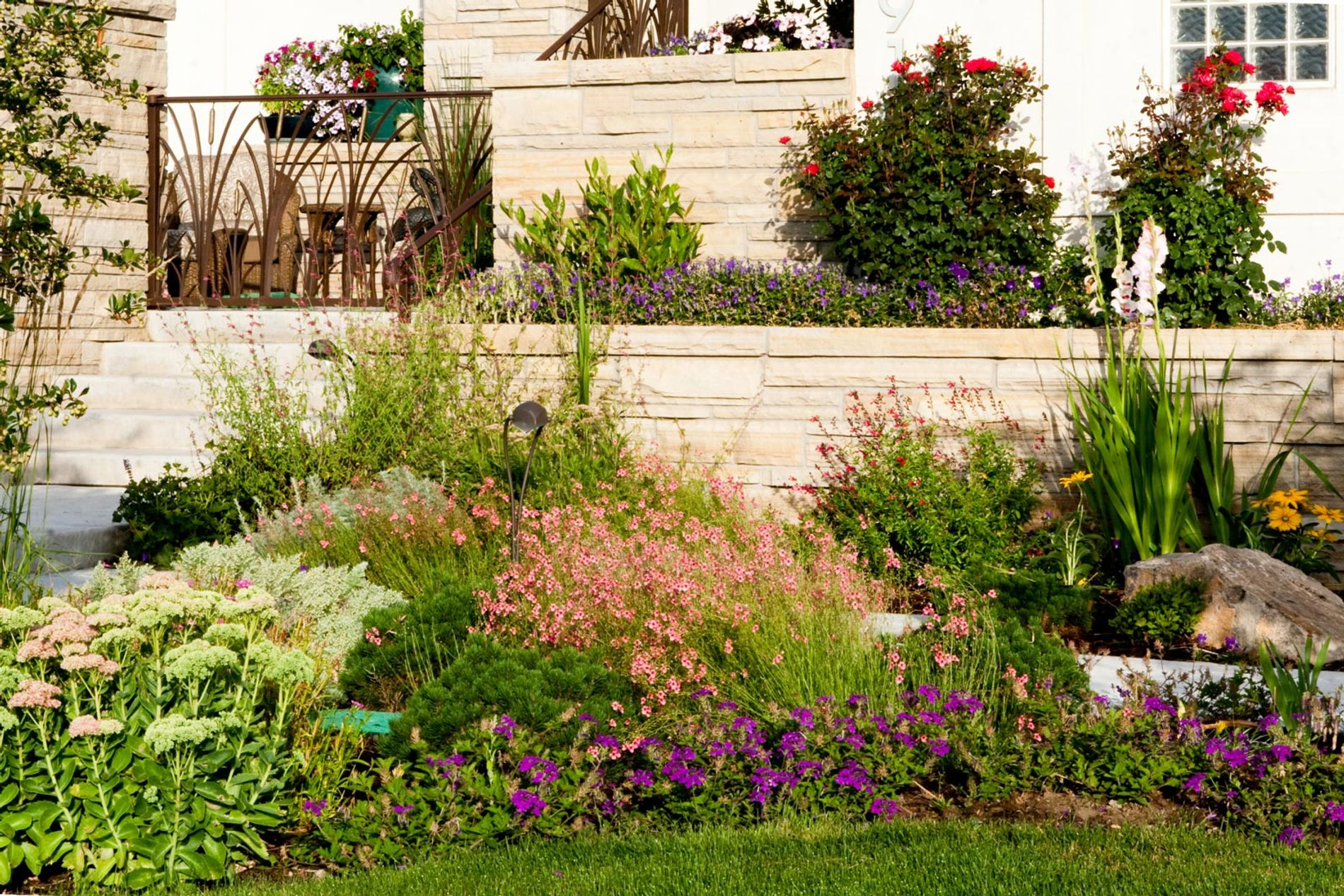 Landscape Plantings in Front Terrace
