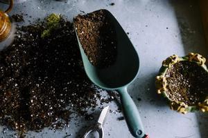 food-produce-soil-gardening-trowel-pots