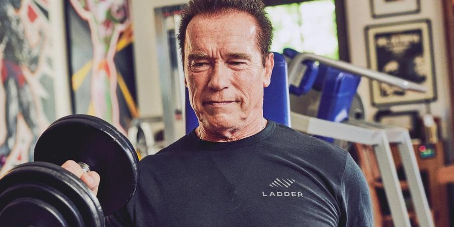 arnold arm workout