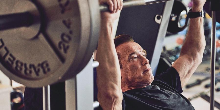 arnold shoulder workout