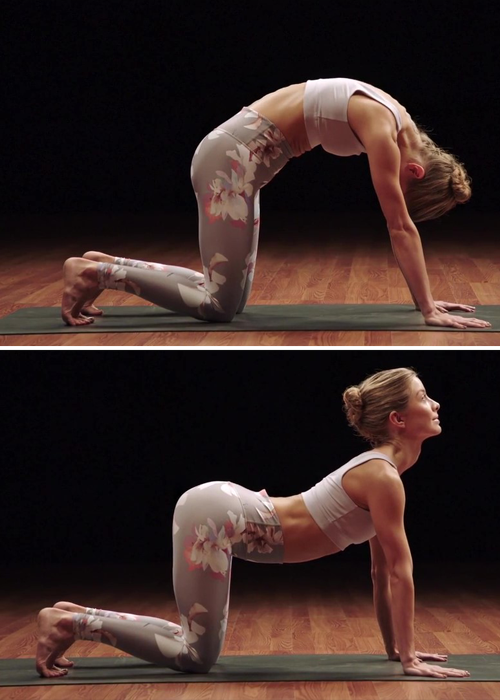 cat cow pose demonstration | yoga for athletes