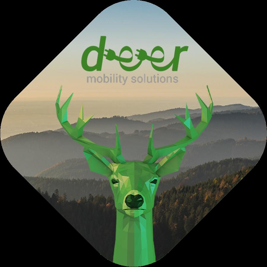 Company collaboration between deer ecarsharing and fleetster