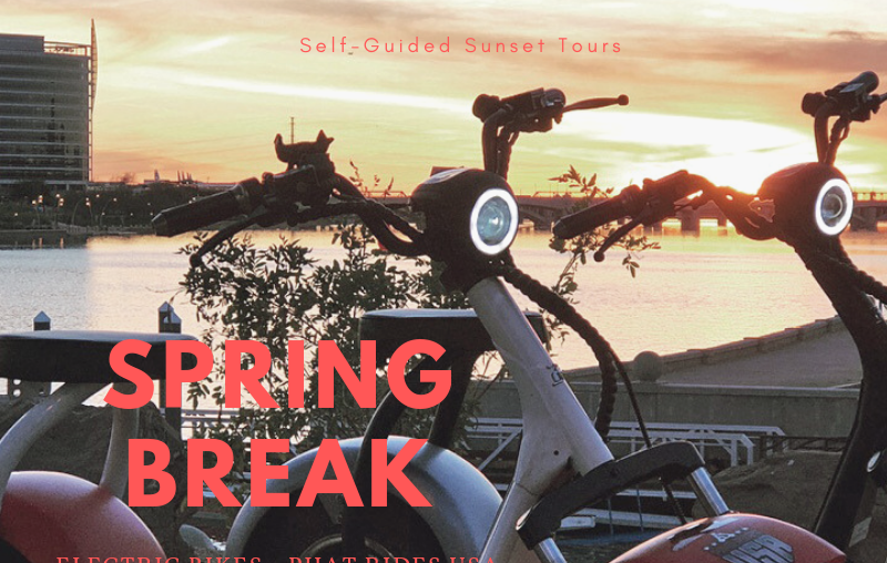 Spring break scooters in front of water