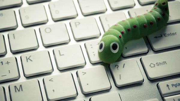 A cute worm on a keyboard