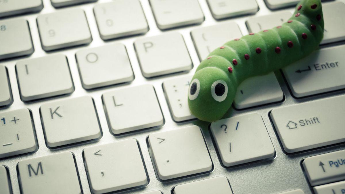 A cute worm on a keyboard