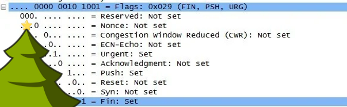 A Christmas Tree appears over the packet flags in Wireshark