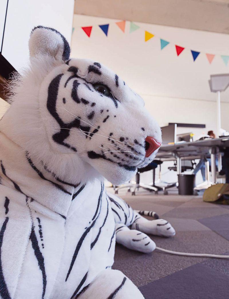 Fullstack Tiger
