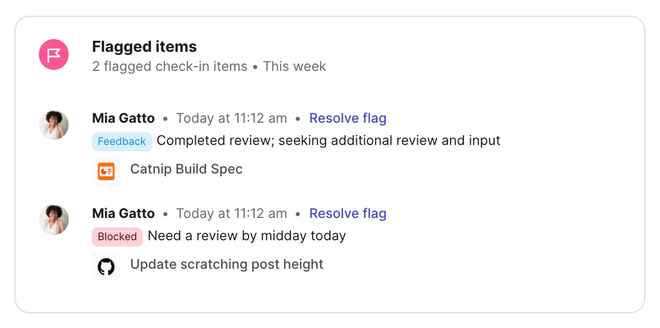Flagged items in Check-in summaries