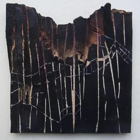 Susan Milne, Burnt Fence Enclosure, 2020