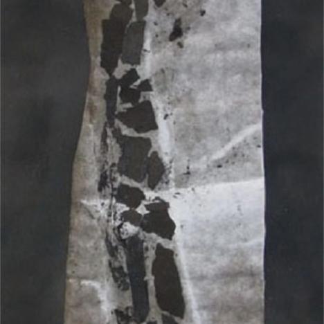 Susan Milne, Burnt Fragment, 2020