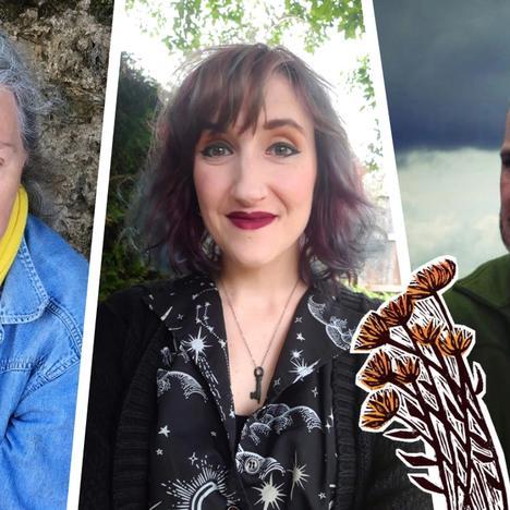 September Promises: Live Poetry