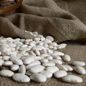 Organic White Kidney Bean Extract