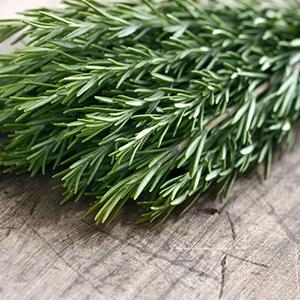 Rosemary – USDA Certified Organic