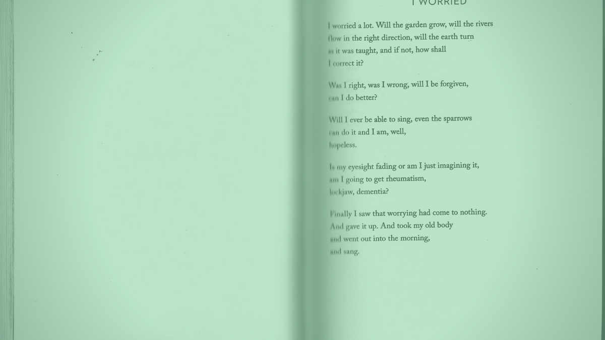 "A photo of the poem ""I worried"" by Mary Oliver"