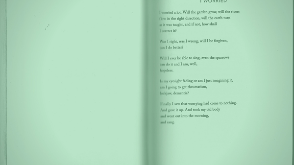 """A photo of the poem """"I worried"""" by Mary Oliver"""