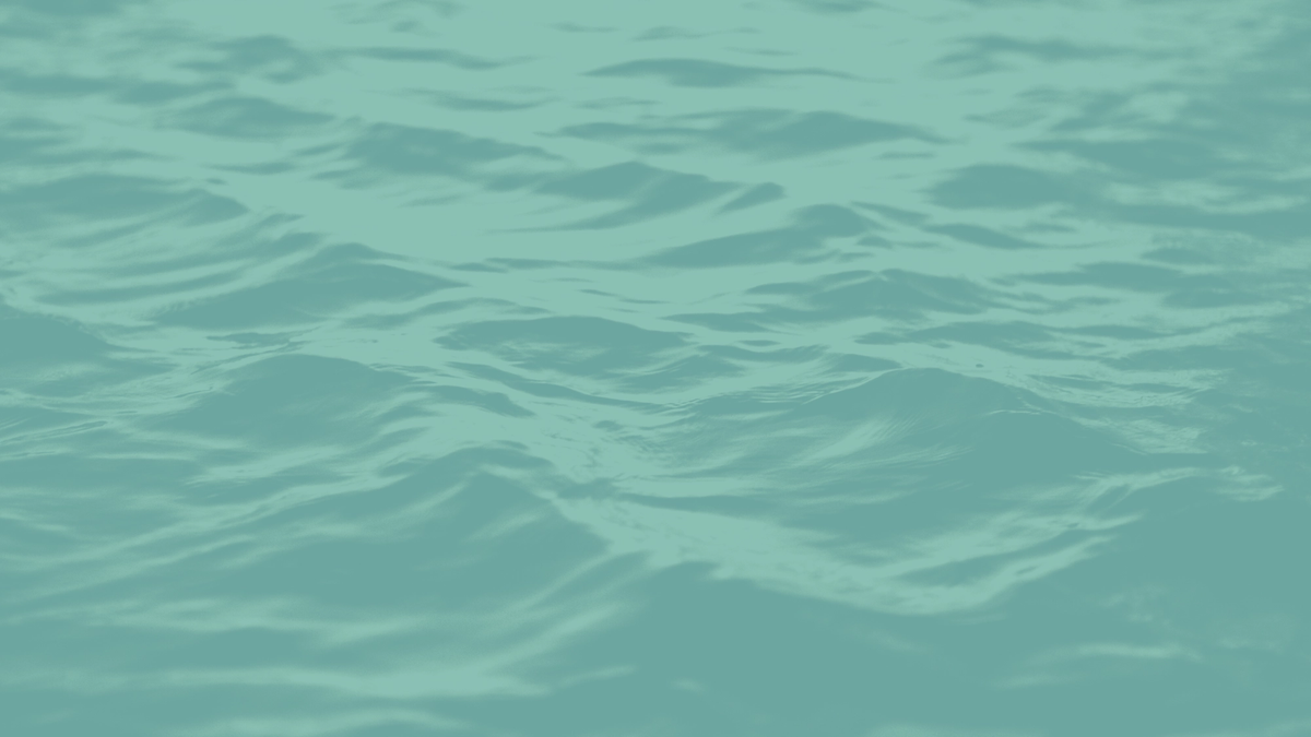 Picture of the sea