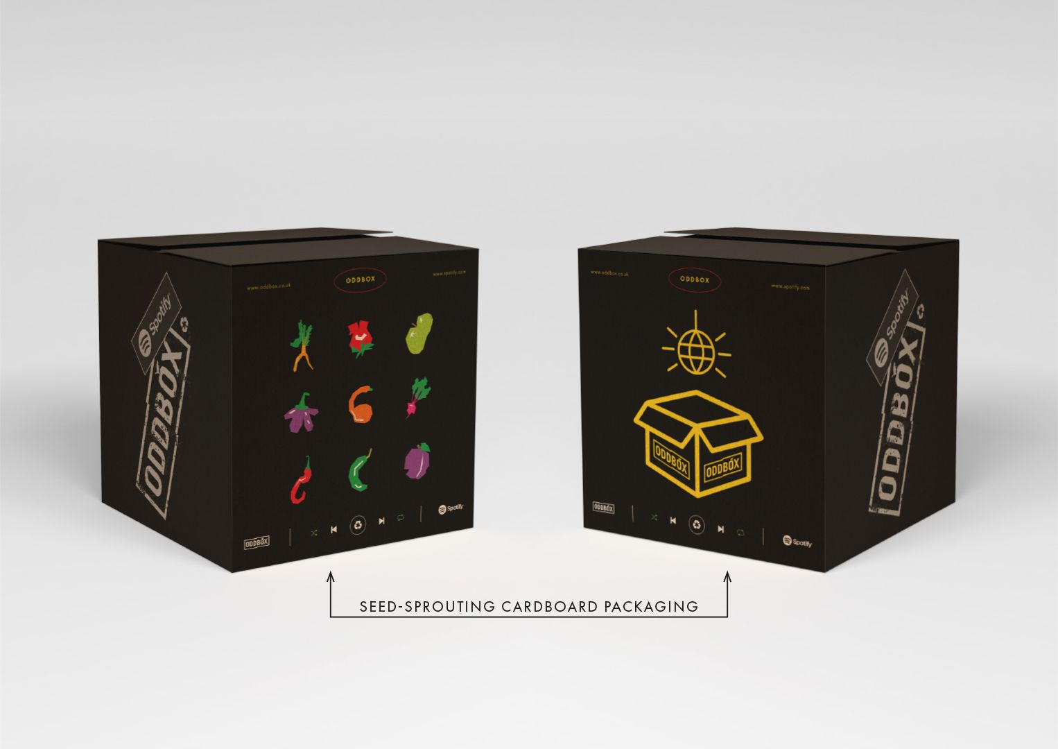 Oddbox Packaging