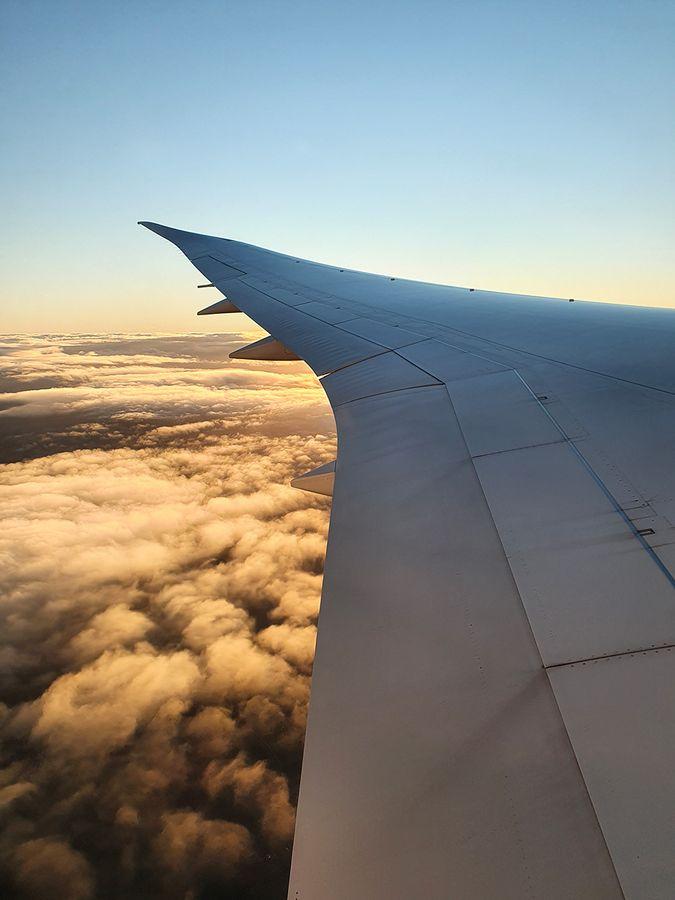 787 Dreamliner's wing
