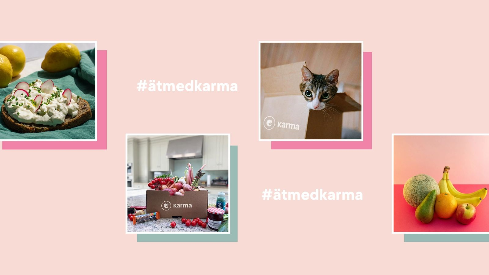 Karma box competition