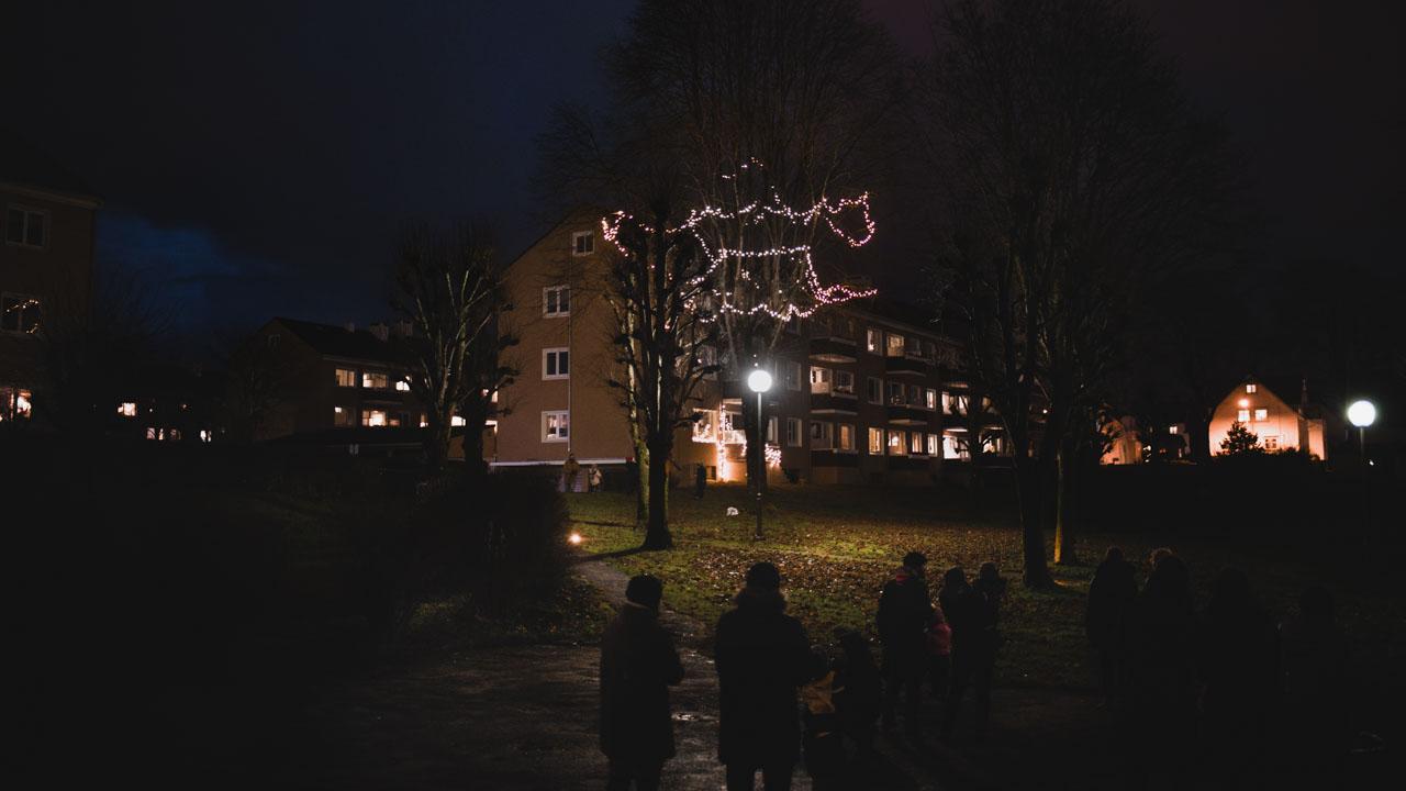 julelys i et tre