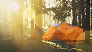 Telt i skogen - sport1