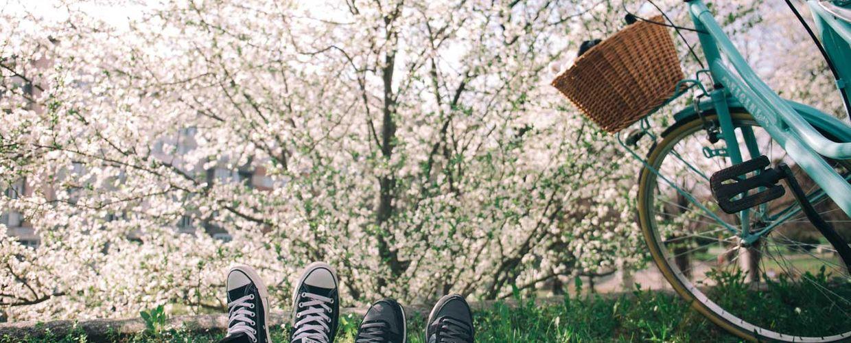 To par føtter ved blomstrende frukttre