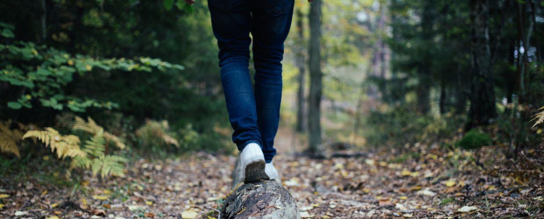 Føtter balanserer på stokk i skogen