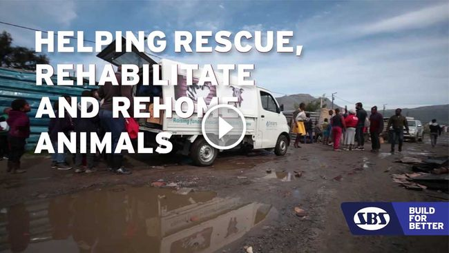 Tears Animal Rescue
