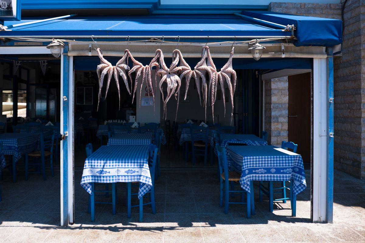 griechisches Restaurant mit frischen Tintenfischen in Piräus