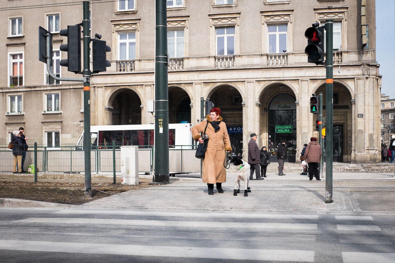 gegen Kälte eingekleideter Hund in Krakau Nowa Huta