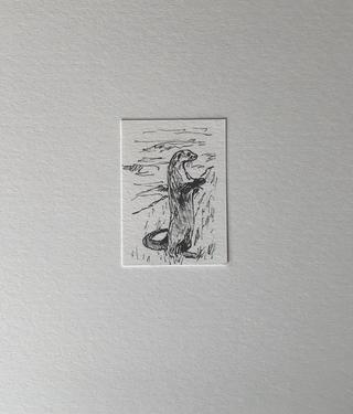 Bedreigde dieren tekening pen op papier