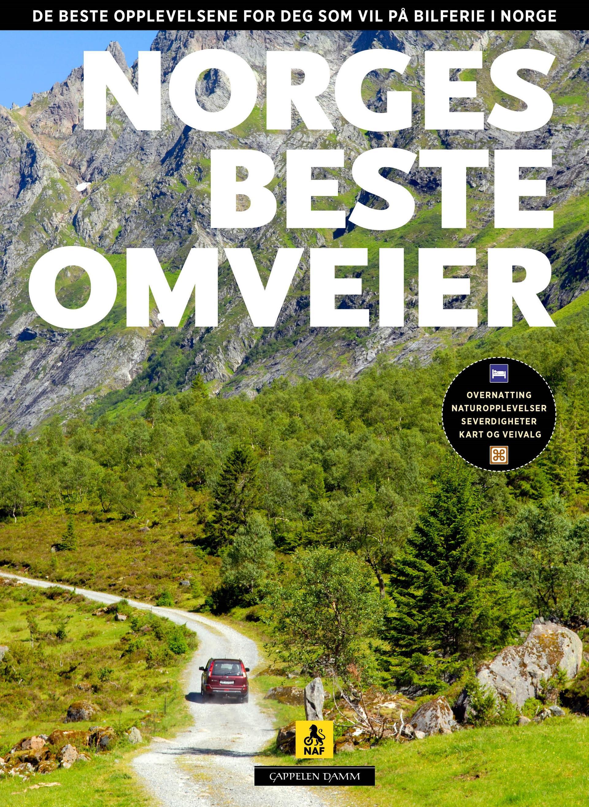 Norges beste omveier om Norgeferie av Per Roger Lauritzen og Reidar Stangenes