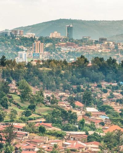 Four-Day Gorillas Safari via Kigali (Rwanda)