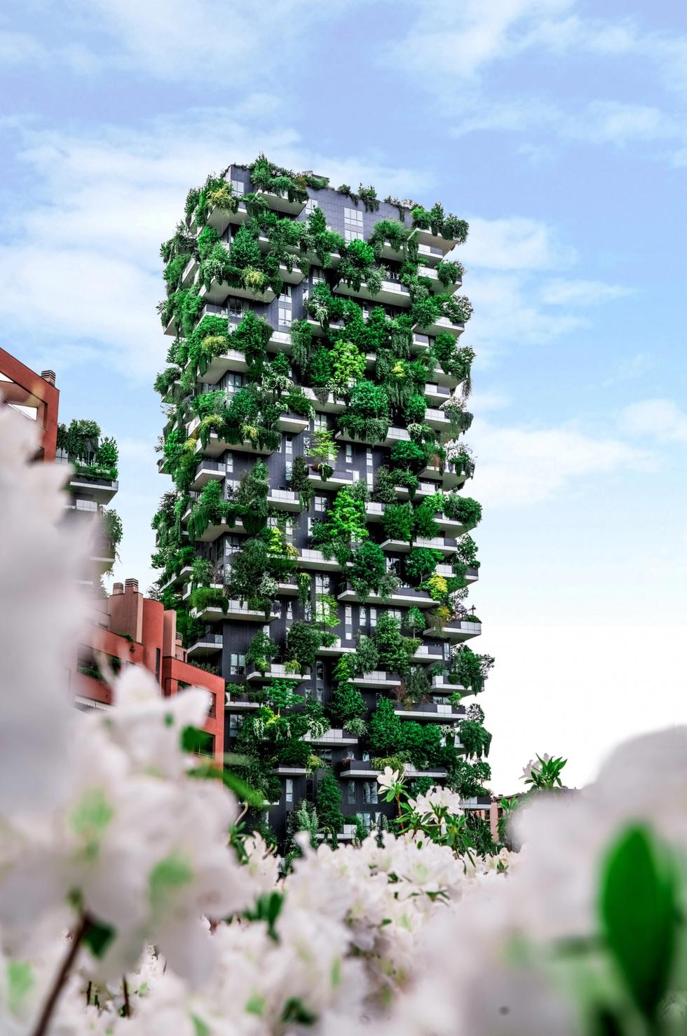 Green plants on building sustainability
