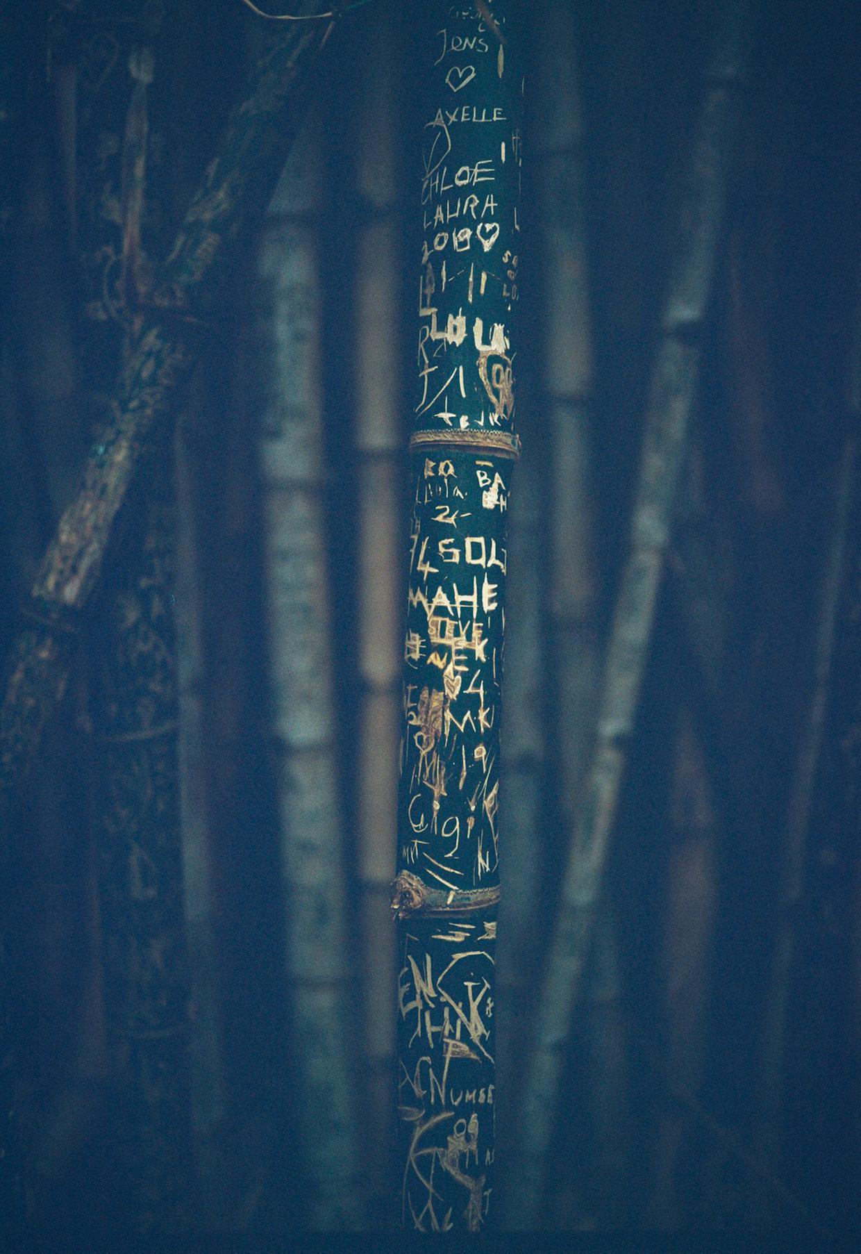 LATW - Carved Devotion