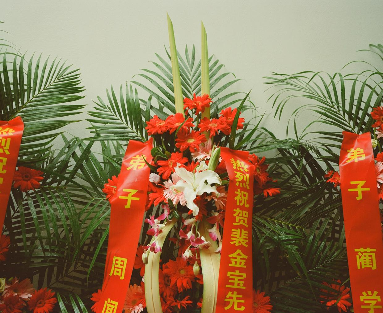 TGE - Suzhou Greetings