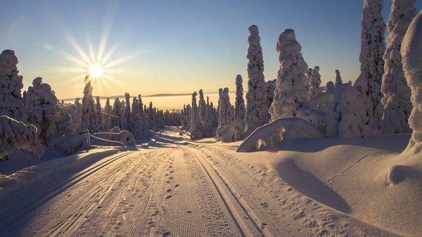 Langrennspor i vakkert vinterlandskap