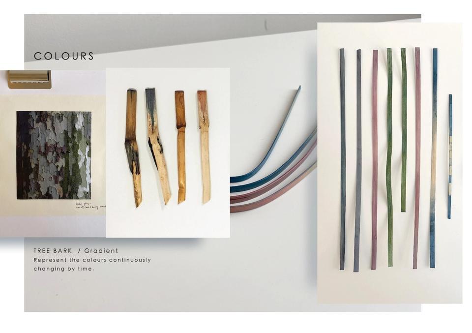Hsin-chun Liu (Sidney)'s Bamboo Future