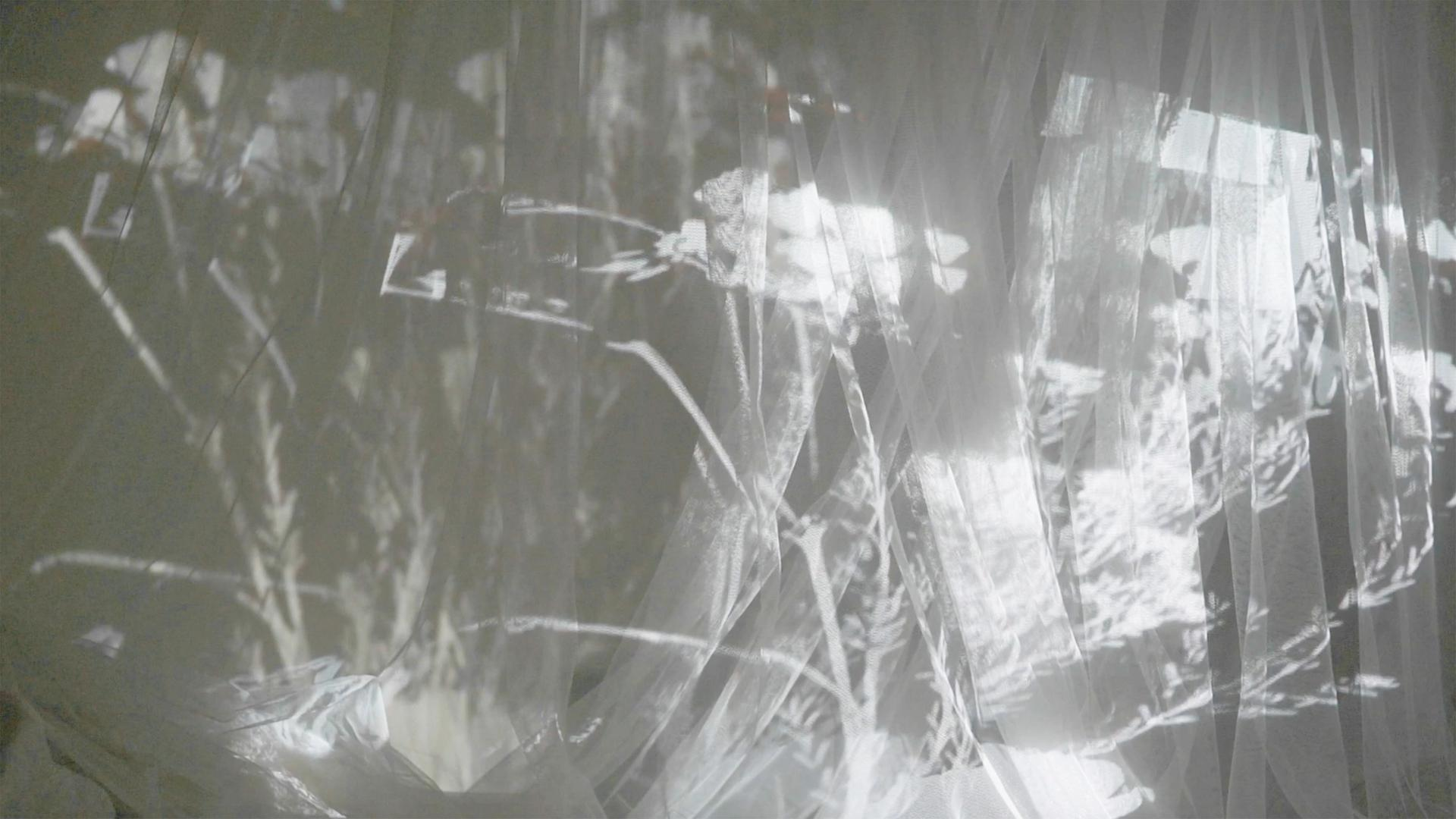 Still from constant conjunction
