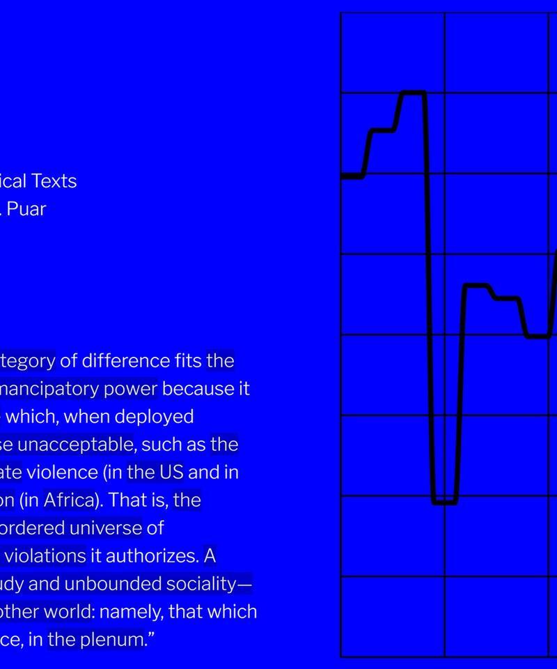 Jasbir K Puar: Fifteen Critical Texts