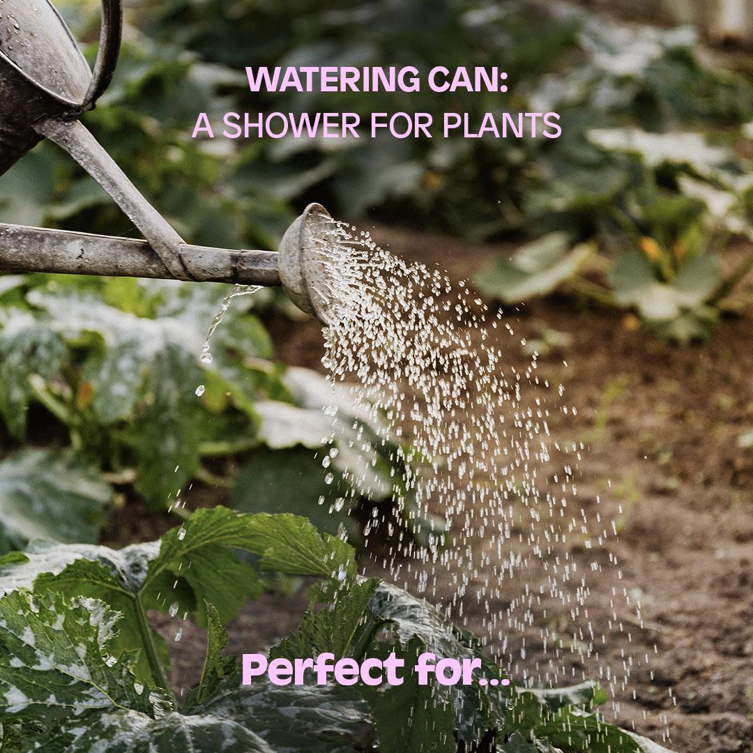 WATERING CAN: A shower for plants